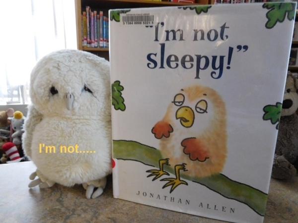 stuffed animal sleepover white stuffed owl with I'm Not Sleepy picture book